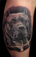 Mayer Péter Junior - Tetoválások 2
